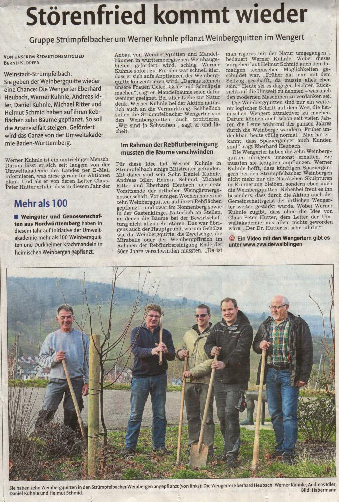 <?=Gruppe Strümpfelbacher um Werner Kuhnle pflanzen Weinbergquitten?>